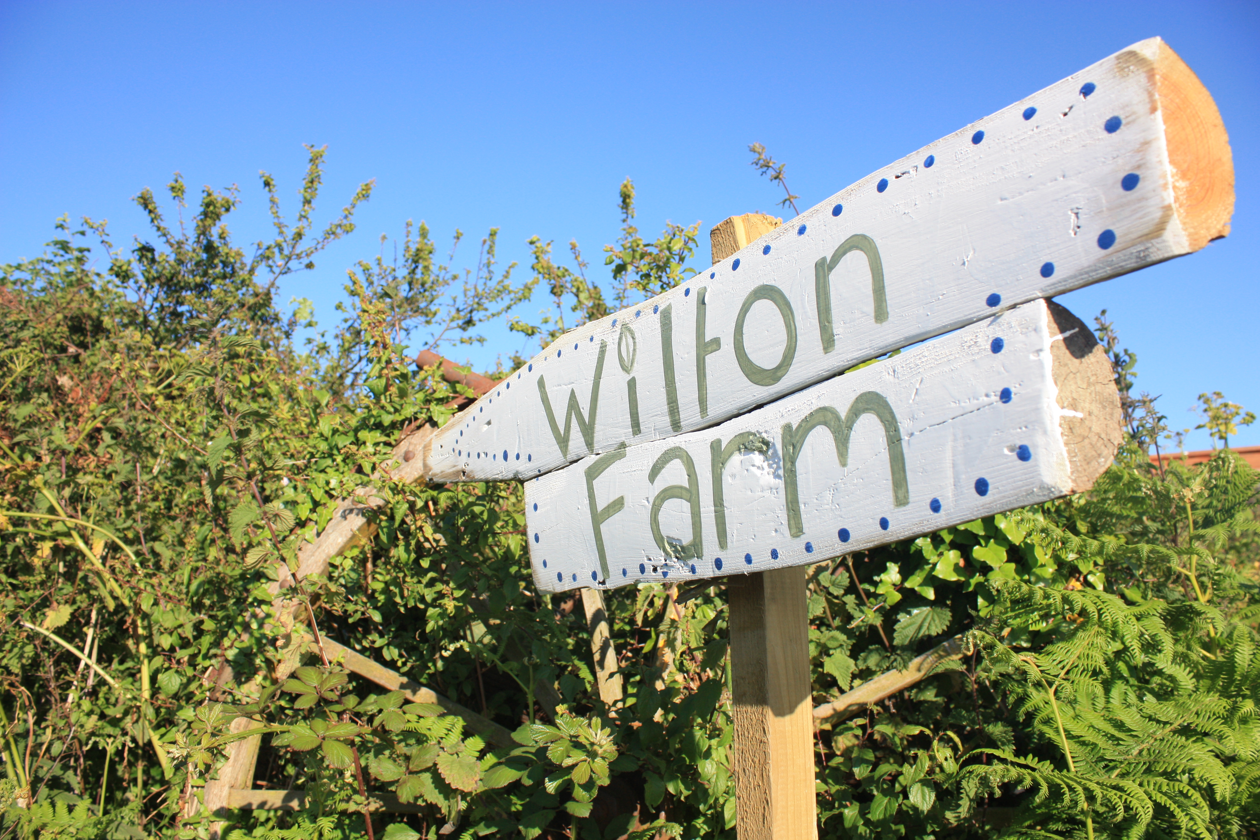 Wilton Farm Sign