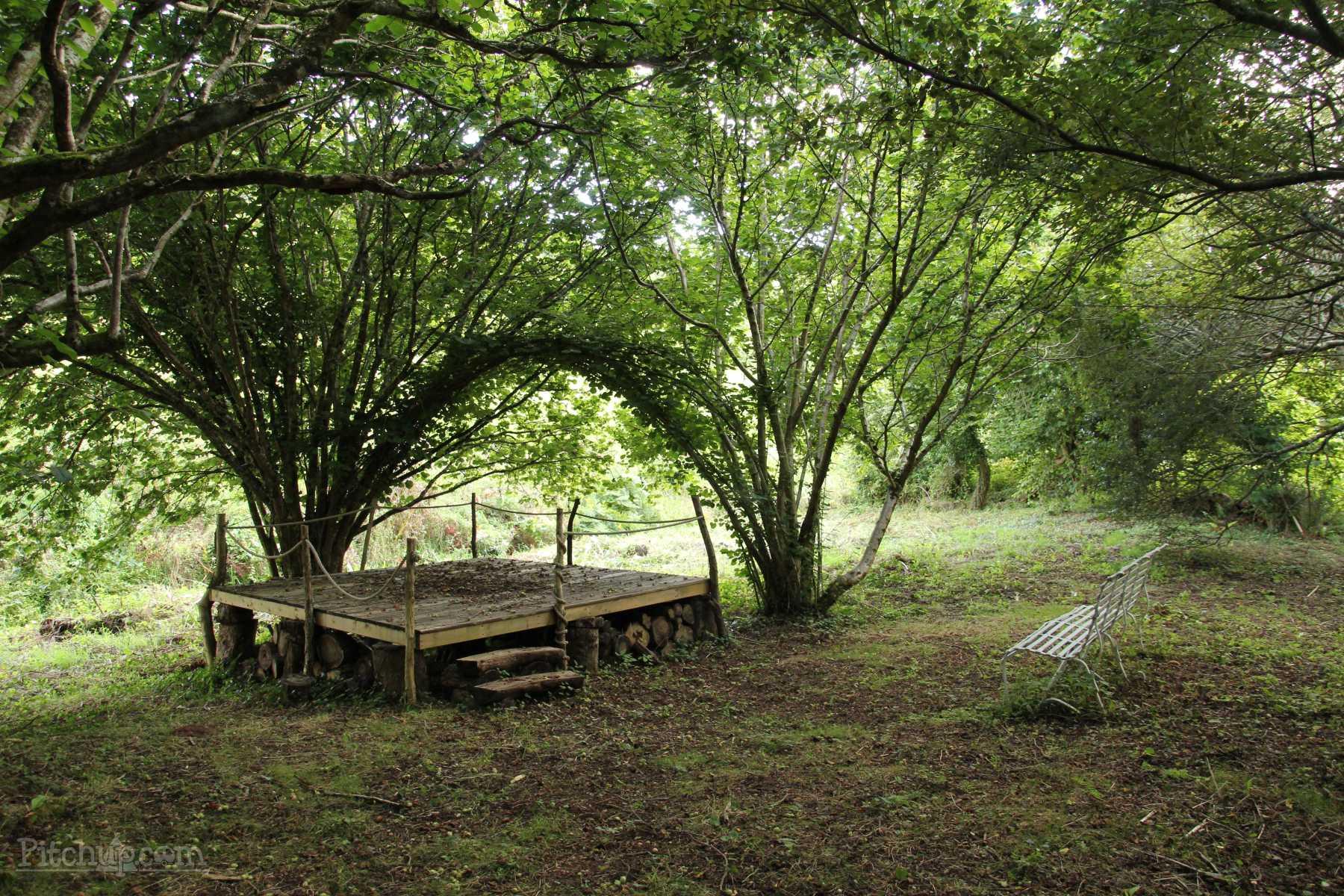 The Glade at Wilton Farm, a South Devon Campsite